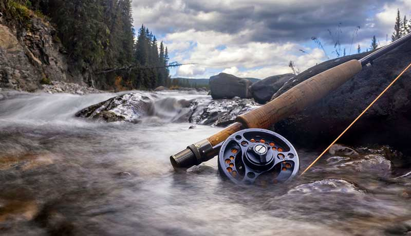 Best Dry Fly Rod