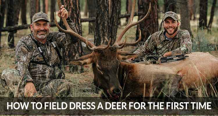 how to field dress a deer for the first time